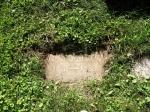 Burial marker for Otto Klotz, Beechwood Cemetery, Ottawa, Ontario